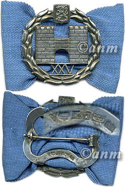 Army Officer's school graduation badge